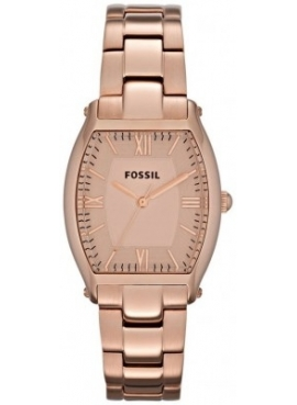 Fossil FES3120