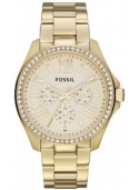 Fossil FAM4482