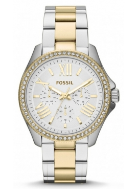 Fossil FAM4543