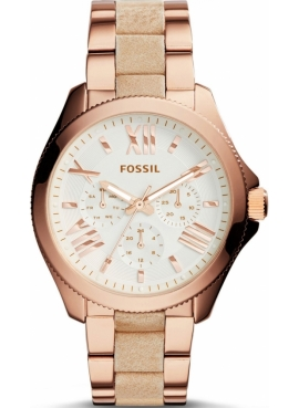 Fossil FAM4622